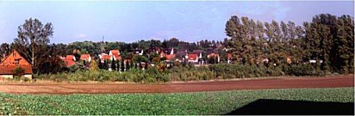 """Ein Hektar Land wurde 1996 aufgeforstet. Diese Aufnahme entstand im Herbst 2001. In einigen Jahren wird das """"Auewäldchen"""" die Ortschaft Imbsen wohl hinter sich versteckt haben. Der Lauf der Nieme ist hier nur zu erahnen (Pappelreihe)."""