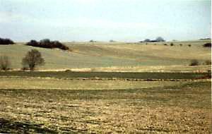 1990: Die dunkle Ackerfläche (Mitte) hinter dem Niemelauf wurde erworben und ein biotopvernetzender Gehölzstreifen gepflanzt.