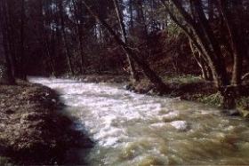 Bildmitte ist die Mühlgrabenableitung nach rechts erkennbar, die nach wie vor den Teich des Klostergutes speist.
