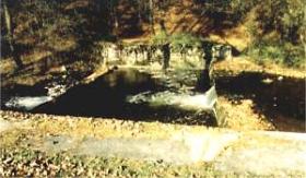 Unverhofft, mitten in einem intakten Bachabschnitt wurde ein Querverbau zur Wasserableitung für einen Teich errichtet.
